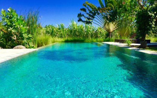 pool view villa pantai - bali icon property